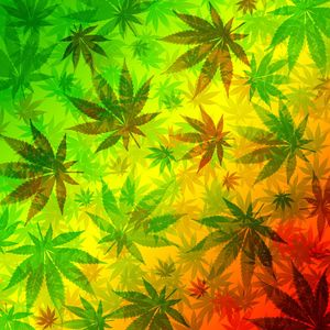 Marijuana Leaves Rasta Pattern