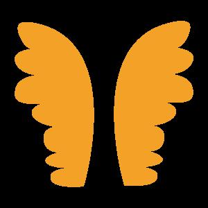 Wings Of Fairy
