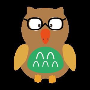 Nerdy Owl On Orange
