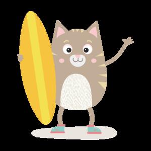 Summer Cat Surfing
