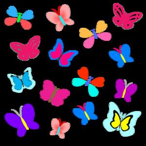 Butterfly Pattern 5