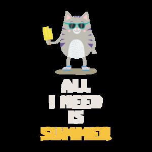 Summer Cat With Icecream