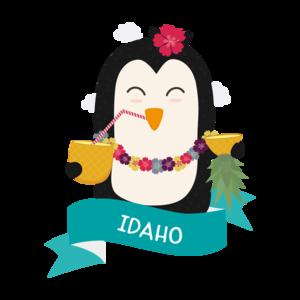 Penguin Hawaii From Idaho