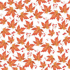 Autumn Maple Leaves And Berries Watercolor Pattern